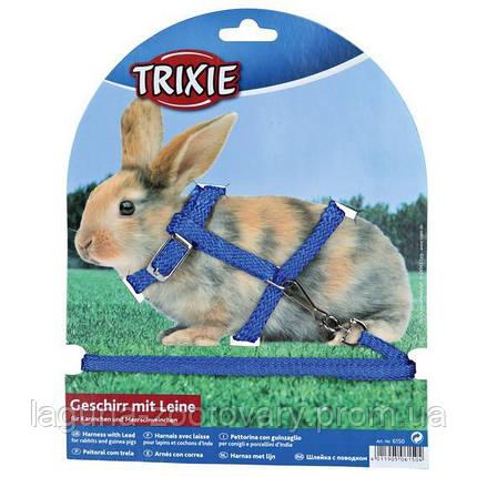 Шлейка с поводком 1.2м/8мм для кроликов, фото 2