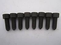 Болт крепления маховика MB Vito W638 2.2d (OM611), фото 1
