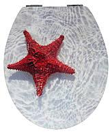 Крышка для унитаза морская с микролифтом Mambo AWD02181128