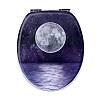 Крышка для унитаза с микролифтом 3D Moon AWD02181310