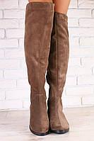 Демисезонные женские ботфорты коричневые