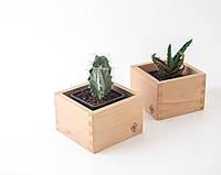 Подставка Wooden Box