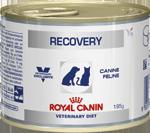 Royal Canin (Роял канин) Recovery Консервы для собак и кошек восстановительный период после болезни 195 г