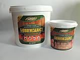 """Биоогнезащита антисептик-антиперен для деревини ХМББ-3324 """"БЛИСК"""" ( 10 кг розчин), фото 2"""
