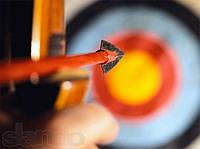 Стрельба из лука, обучение стрельбе из лука