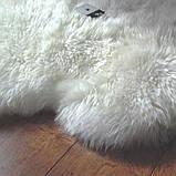 Килими з овчини великого розміру, великі овечі шкури, фото 2