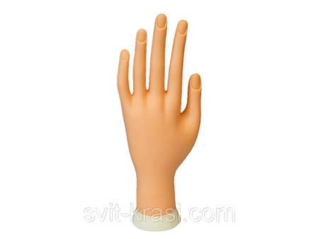 Рука-манекен треннировочная