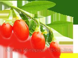 Diet Gum с ягодами  годжи