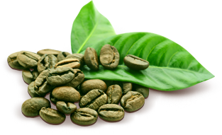 Diet Gum жвачка с зеленым кофе