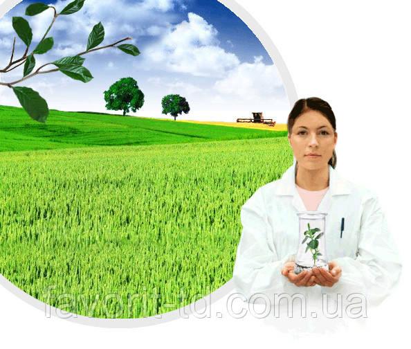 Фунгицид Консенто 450 к.с. ( фенамидон 75 г/л+пропамокарб-гидрохлорид 375 г/л )