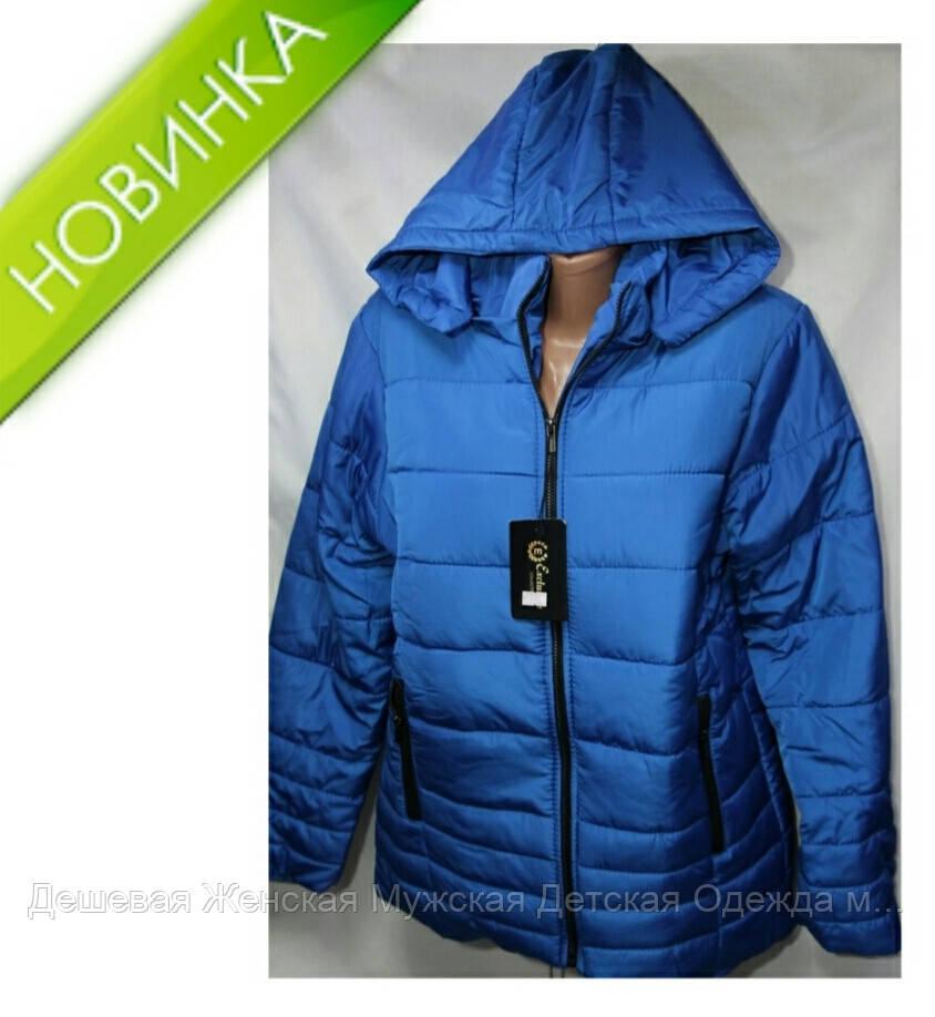 Куртка жіноча оптом синтепон