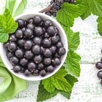 TPA Black Currant Flavor (Черная Смородина), 5 мл