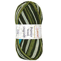 Пряжа Premier Wool Degrade10