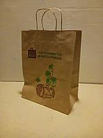 """Пакет с ручками """"Eco Bag"""", 335*260*140"""