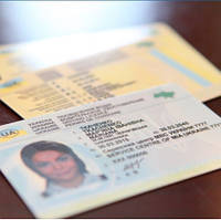 Украинским водителям придется менять права: как это будет