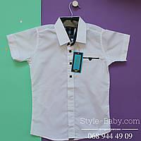 Рубашка белая с коротким рукавом на мальчика для школы Турция р.7-11 лет