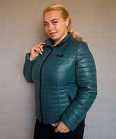 Куртка женская большого размера №5/1 р. 50-56 бутылочный