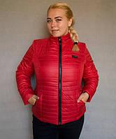 Куртка женская большого размера №5/1 р. 50-56 красный