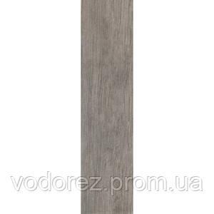 PARQUET  OLIVA  ZSXPT4R 15x60х0.95