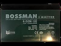 Аккумуляторы к электровелосипедам 6DZM12E