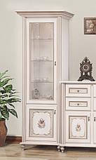 Витрина (сервант) для гостиной 1Д  Парма ,Світ меблів, фото 2