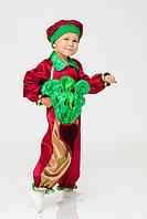 Карнавальный костюм для мальчика Бурячок