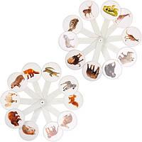 """Веер для развития и обучения """"Дикие животные"""".Развивающие карточки"""