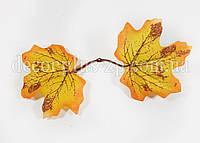 Лист клёна осень, жёлтый