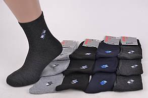 Мужские носки SportLife (WA370)   12 пар, фото 2