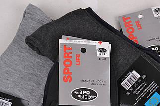 Мужские носки SportLife (WA370) | 12 пар, фото 2