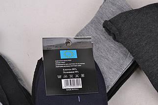Мужские носки SportLife (WA370) | 12 пар, фото 3