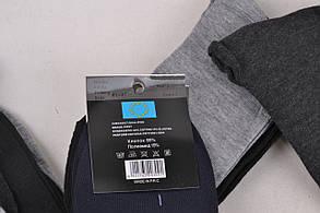 Мужские носки SportLife (WA370)   12 пар, фото 3