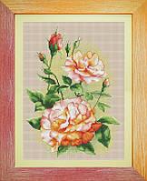 Набор для вышивания нитками Садовые розы