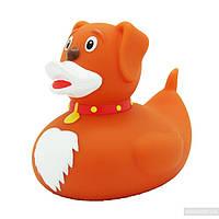 Игрушка для ванной LiLaLu Собака утка (L1944)