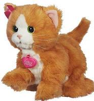 Интерактивная кошка Дейзи, Игривый котёнок, FurReal Friends Daisy Play With Me Kitty