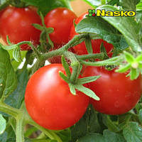 Томат Лира F1/ Lira F1 от Наско (Nasko), Украина, 1000 семян