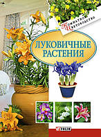 Сухов. Луковичные растения, 978-966-03-4229-3