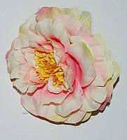 Л-158 Роза флорибунда 10 см