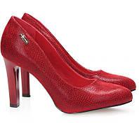 Красивые и удобные женские туфли на каблуке