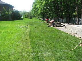 Акция. Рулонный газон Универсальный., фото 3