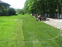 Рулонный газон Универсальный. Газон в рулонах, фото 2