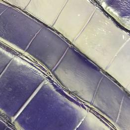 Синяя кожа крокодила - Интернет-магазин итальянской кожи (Pellami) в Киеве