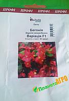"Семена цветов Бегония Вариация F1 , 50 шт. ""Бадваси"" Украина."