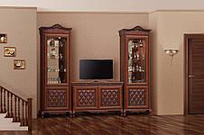 Витрина (сервант)  для гостиной 1Д  Ливорно Світ меблів, фото 3