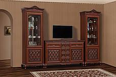 Бар для гостиной 2.2 Ливорно Світ меблів, фото 2