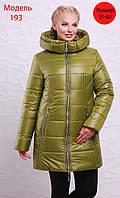 Куртка 15239