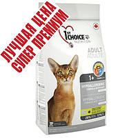 1st Choice (Фест Чойс) с уткой и картошкой гипоаллергенный сухой супер премиум корм для котов, 5,44 кг
