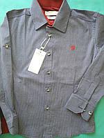 Детская рубашка на мальчика Коттон Турция Размер 6- 15 лет