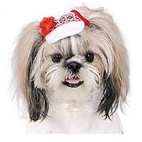 Кепка Pet Fashion ЛЬНЯНАЯ для собак