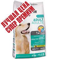 1st Choice (Фест Чойс) малокалорийный сухой супер премиум корм для собак с избыточным весом, 12 кг